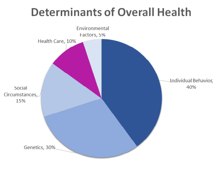 Determinants of Overall Health Pie Chart